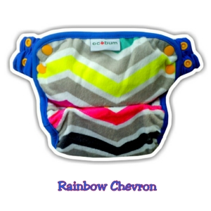 Ecobum Pant Rainbow Chevron (MINKY) New